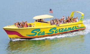 Clearwater Beach & Lunch with Sea Screamer