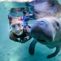 Orlando Manatee Snorkel Tours with Real Florida Adventures